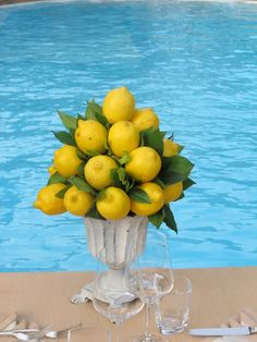 Medicean look urn for a small lemon topiary centerpice. Ideal for BBQ party