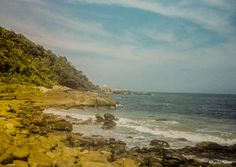 Fotografia Analógica, Ilha do Mel - PR / Olympus TRIP 35 |/ KODAK PRO IMAGE 100 / Praia