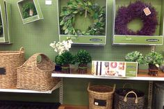 Decor Plants