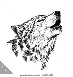 black and white engraved isolated wolf