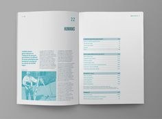 Clabsa's 2011 Annual Report on Behance