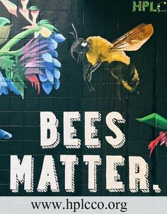Why Bees matter to everyone  #savebees #savebutterfly #protectpolinatorslife #birdconcersations #ngousa#bumblebees #naturalhoney