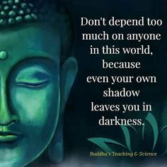What is Meditation and What Are Its Benefits Buddhist Quotes, Spiritual Quotes, Wisdom Quotes, Positive Quotes, Life Quotes, Ego Quotes, What Is Meditation, Meditation Quotes, Buddha Quotes Inspirational