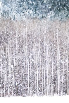 Winter Photography, Birch Trees in Snow, Nature Photography, Woodland Wall…