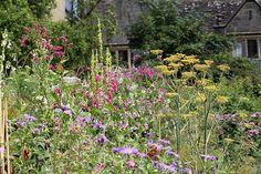 Gravetye Wild Planting - William Robinson, Sussex
