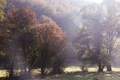 I feel like wandering - it was on the start of autumn...