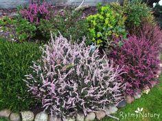 Jak Tasha Tudor z życia bajkę uczyniła. Deck Enclosures, Garden, Plants, Garten, Lawn And Garden, Gardens, Plant, Gardening, Outdoor