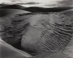 edward weston - Google 検索
