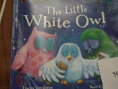 Book to start the year...introduce classroom theme and celebrate our differences!!!