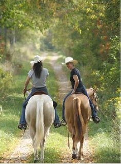 <3 Cowgirls Horse Crazy