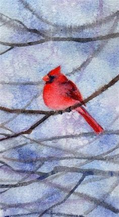 """CARDINAL WATCH 2 bird watercolor painting by Barbara Fox"" original fine art by Barbara Fox"