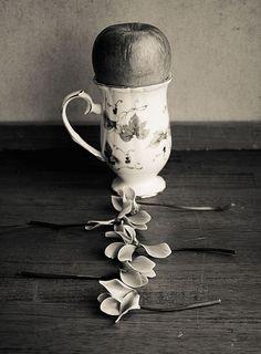 Flower by Shuichi Machimoto
