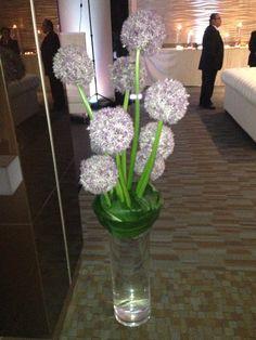 Giant alliums in vase idea