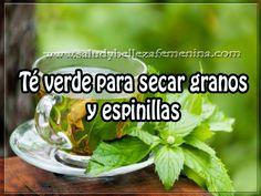 Té verde para secar granos y espinillas Celery, Herbs, Skin Care, Vegetables, Tips, Nature, Beauty, Food, Oil