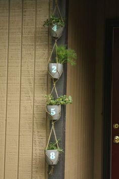 hanging number planters