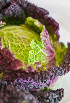 (vía Life Love Food: Baked Falafel and Cabbage Wraps | Involtini di Verza con Falafel al Forno)