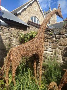 by Katherine Miles titled: 'Large Willow Giraffe (Big Outside garden sculpture)'. Outdoor Sculpture, Garden Sculpture, Willow Weaving, Ceramic Animals, Animal Sculptures, Wire Sculptures, Land Art, Public Art, Garden Inspiration