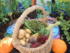 Botánica Insólita: Alimentos de la Naturaleza