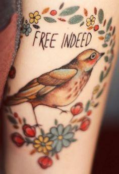 Free indeed bird.