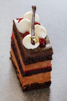 Chocolate Raspberry Entremet