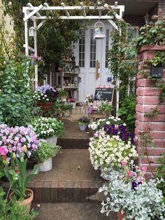 Advice On How To Properly Grow An Organic Garden Garden Nook, Garden Cafe, Love Garden, Water Garden, Dream Garden, Garden Cottage, Climbing Flowering Vines, Gothic Garden, Spring Garden