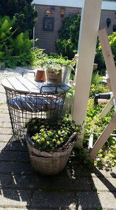 Aardappelmand met hout deksel als tafel.. Design Inspiration, Plants, Action, Outdoor, Thoughts, Outdoors, Group Action, Planters, Outdoor Living