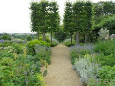 The Walled Garden at Broughton Grange designed by Tom Stuart-Smith