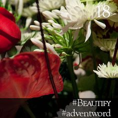 #AdventWord #Beautify || The crucial step in creative work is the first step we take beyond the merely functional, the strictly necessary. The pottery jug shaped and glazed with an eye to beauty. The flower brought in from the field to beautify a dwelling. They are indeed small steps. But they are giant leaps toward larger life. Br. Mark Brown || @SSJEWord: Post prayerful images with the #adventword hashtag to create a Global Advent Calendar. Check out www.aco.org/adventword.cfm.