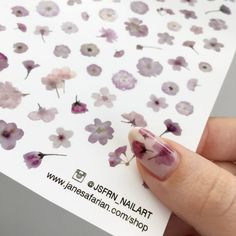 Hey, I found this really awesome Etsy listing at https://www.etsy.com/listing/275397648/pressed-cherry-blossom-sakura-flowers