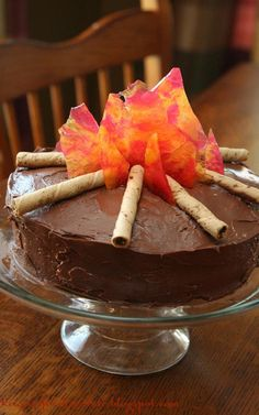 Sally made this really  cool-looking, campfire cake for Father's Day yesterday!     We were looking on Pinterest for (last minute but ...