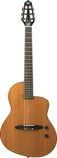 Michael Kelly Guitars version of the Rick Turner classic. Only $699 for this boutique guitar :)