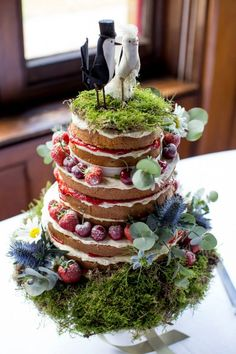 Top Tips – Wedding Cakes. Maybe make a cake like this out of angel food?