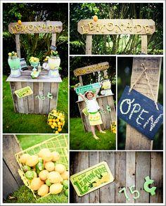 Amazing lemonade stand feature from meghan wiesman for Lemon shaped lemonade stand