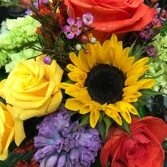Loving all the bright blooms we have in the shop this week! #mmflowers #gowiththeflowers