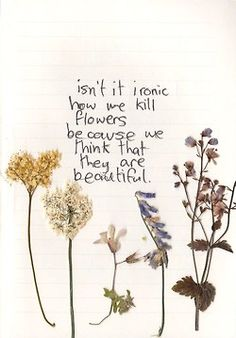 popular quotes beautiful Typography words writing flowers feelings handwriting love quotes poem notebook relatable handwritten Moleskin artists on tumblr quote book pressed flowers tumblr artists the tumblr artists tumblr art art on tumblr dried flowers