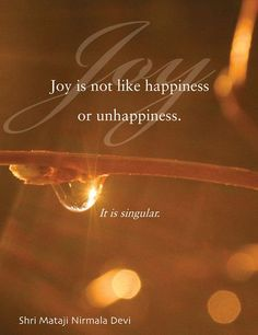 """Joy is not like happiness or unhappiness, it is singular."" - Shri Mataji"