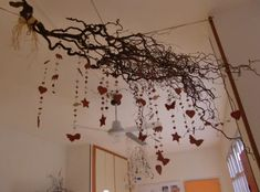 Natural ceiling art: A collection of pictures captured during two different CMU Study Abroad trips to Reggio Emilia, Italy ≈≈ For more inspiring pins http://pinterest.com/kinderooacademy/reggio-inspired/