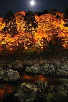 Autumn leaves at night in Korankei, Aichi, Japan