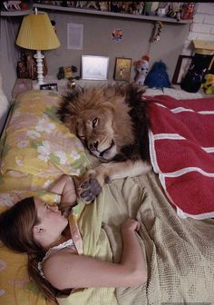 Lion King size bed