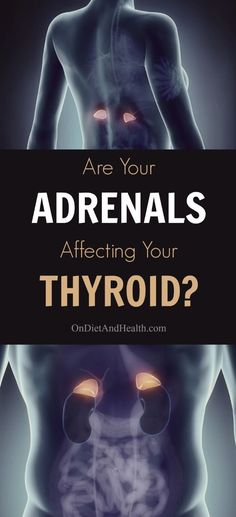 Adrenal fatigue and thyroid issues are often related. A basic adrenal and thyroid connection is missed by doctors addressing only the thyroid. Understanding how these endocrine glands affect each other helps you address adrenal fatigue and hypothyroidism Hypothyroidism Diet, Thyroid Diet, Thyroid Issues, Thyroid Gland, Thyroid Disease, Thyroid Problems, Heart Disease, Thyroid Cancer, Addison's Disease