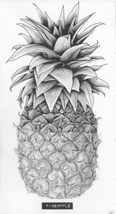 Title: 'Pineapple' Client: SLA Type: drawing / tattoo design / illustration Year: 2013