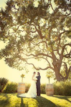 vows at dusk 20 Year Anniversary, Wedding Planning Inspiration, Dream Wedding, Wedding Dreams, Travel Themes, Vineyard Wedding, Wedding Photography, Photography Ideas, Wedding Locations