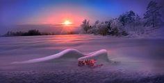 Фотохудожник Игорь Зенин