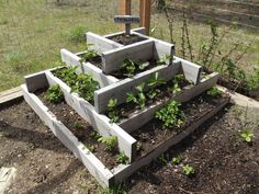 Wonderful idea for a strawberry bed