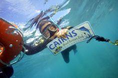 Snorkeling in Carins! so nice I had to hold on a tube desperately tho. Military Service, Tasmania, Snorkeling, Hold On, Tube, Australia, Places, Diving, Naruto Sad