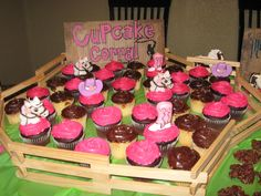 Cowgirl Horse Party cupcakes... It's the idea, not the look.