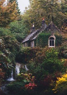 Wohnen im Grünen My cottage will be located right in the middle of the woods. The woods creates a se Old Cottage, Cottage In The Woods, Garden Cottage, Witch Cottage, Cottage House, Cottage Style, Backyard Cottage, Cottage Pie, Ivy House