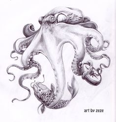Octopus Tattoo Designs | Octopus Tattoo Designs