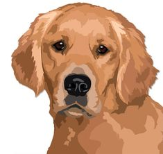 """Receive wonderful ideas on """"golden retriever"""". They are actually readily available for you on our internet site. Animal Sketches, Animal Drawings, Pop Art, Dog Quilts, Cute Dogs And Puppies, Golden Dog, Dog Portraits, Animal Paintings, Animaux"""