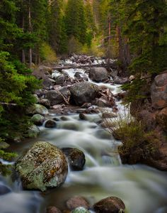 A lush river somewhere in Yellowstone National Park [25923299][OC] #reddit